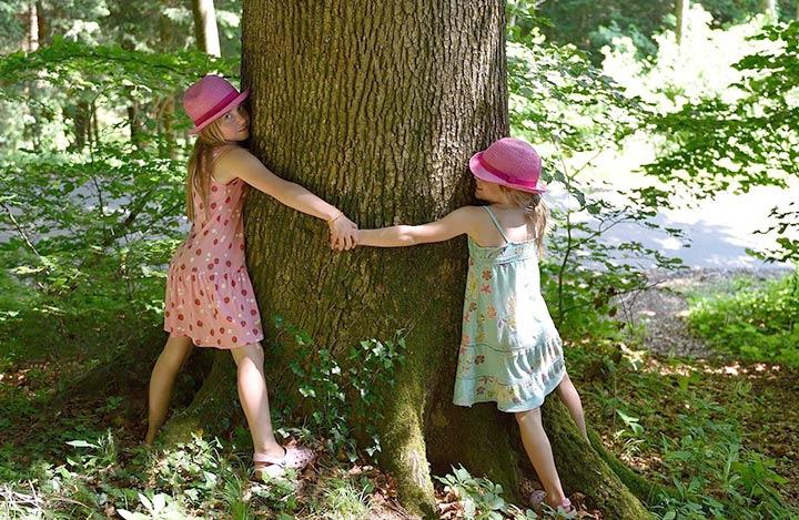 Baumpflanz-Aktionen