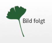 """Fachboden für Kleiderschrank """"Lino"""""""